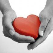 Zakończenie tegorocznych akcji charytatywnych i ekologicznych