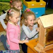 """""""Fascynujący świat pszczół"""" - projekt"""