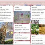 Pierwsze oznaki wiosny w ogrodach drugoklasistów